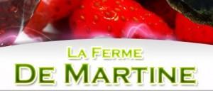 logo_amis_FDM