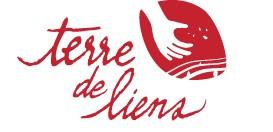 logo_amis_TDL